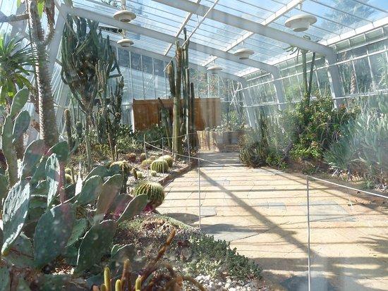 Jardim Botanico do Porto