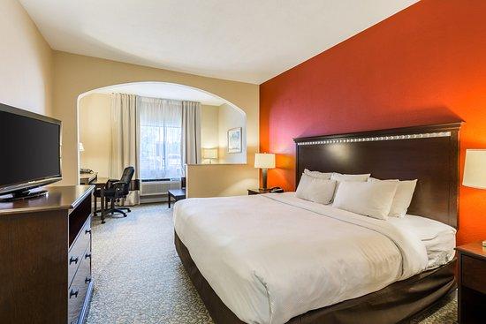 Comfort Suites Near the Woodlands : Suite
