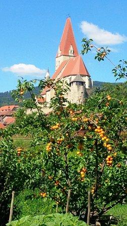 Restaurant Kirchenwirt Wachau Photo