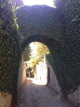 Gaiole in Chianti, Italy: photo2.jpg