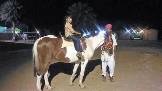 Vijayshree Theme Village: Horse ride