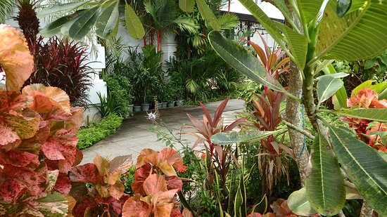 Bilde fra Eastern & Oriental Hotel
