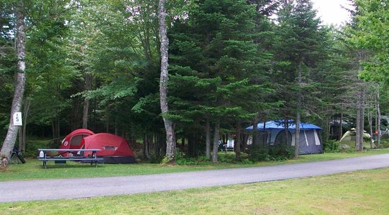 Stonington, Μέιν: Wooded and open RV and tent sites
