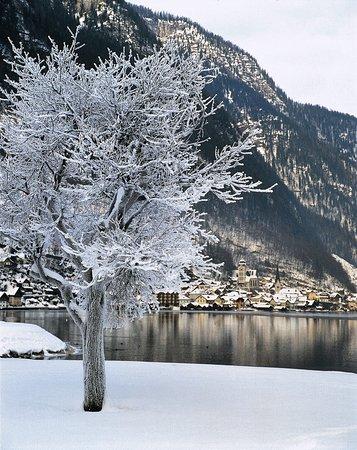 Austria: Hallstatt w Górnej Austrii Fot. Österreich Werbung, Kneidinger