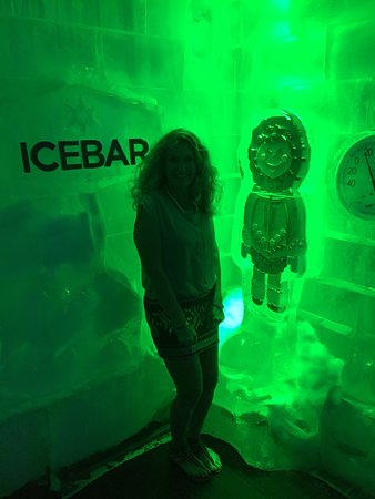 Icebar Orlando: photo0.jpg