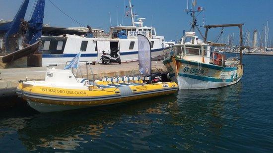 Tax Sea Thau