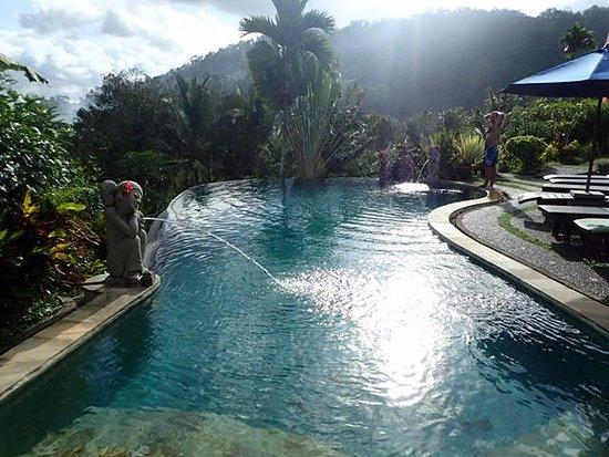 Surya Shanti Villa: プールはこちら以外のもあります。