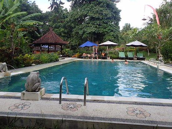 Surya Shanti Villa: 丘の上のもうひとつのプール