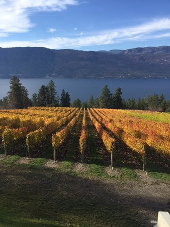 Winfield, Canada: View from Arrowleaf Winery