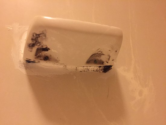 Quality Inn & Suites Medical Park: Underside of the soap dish in the shower (very visible while using the toilet).
