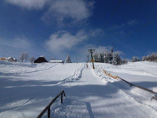 Titisee-Neustadt, ألمانيا: Blick auf die Liftspur und eine Abfahrt hinunter bei traumhaftem Winterwetter. 