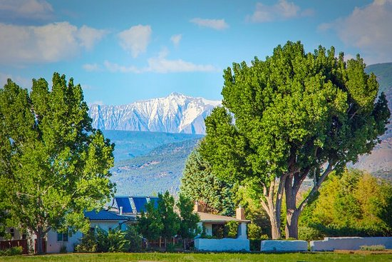 Paonia, CO: The Bed & Breakfast Farm House