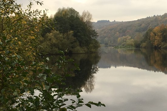 Bodenham, UK: Lake view