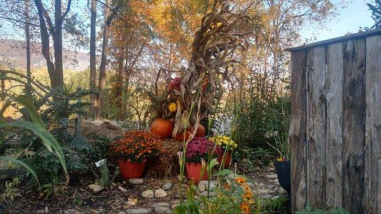 Lake Lure, NC: A taste of autumn