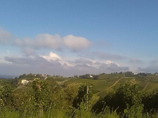 Mornico Losana, อิตาลี: Paesaggio collinare