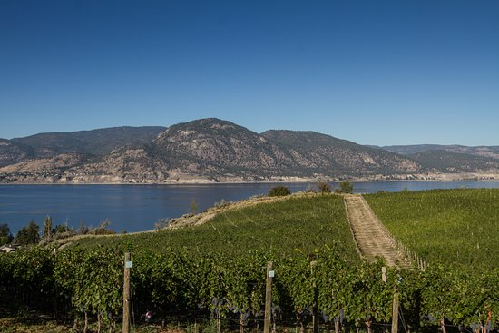Penticton, Kanada: View from Tasting Room