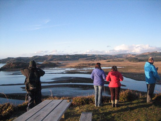 Lochgilphead, UK: Stunning view of Add Estuary from Barr an Daimh viewpoint