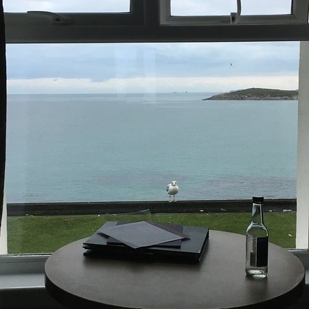Fistral Beach Hotel and Spa: Room with a view with Sid the seagull