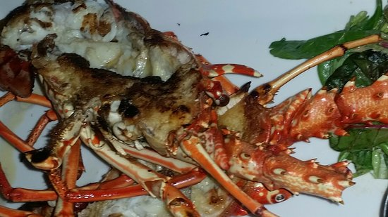 Lurin, San Bartolomé: 1.5 lb cooked lobster - spouse loved it!