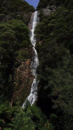 Tasmania, Australia: Montezuma Falls from the swing bridge