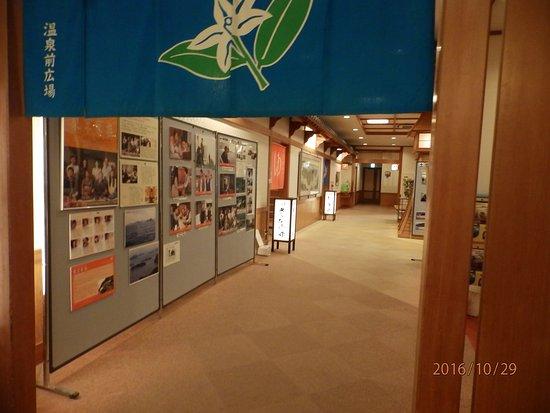 Hotel Seifukan: 浴場への廊下