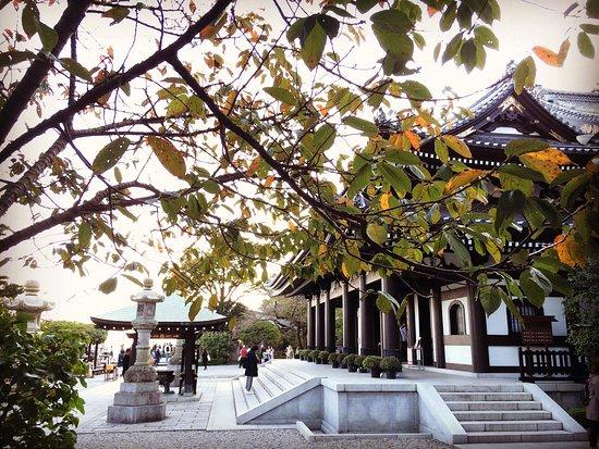 Hase-dera Temple: photo3.jpg