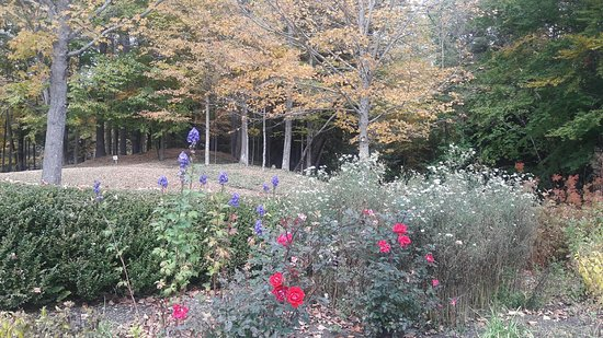 Lenox, MA: gardens in late October