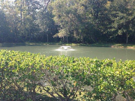 Green Cove Springs, فلوريدا: photo2.jpg