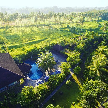 Bhuwana Ubud Hotel: Amazing Bird Eye's Views of Hotel Area