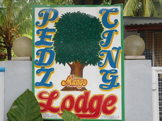 Pedz Cing Mango Lodge