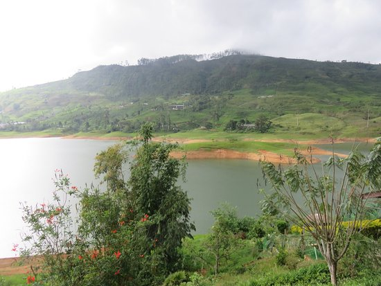 Dickoya, Sri Lanka: Castlereigh Reservoir looks beautiful even though the water level is down.