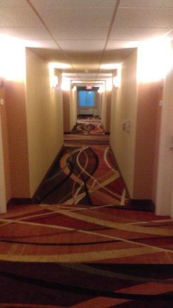 Comfort Suites Lewisburg: IMAG0914_large.jpg