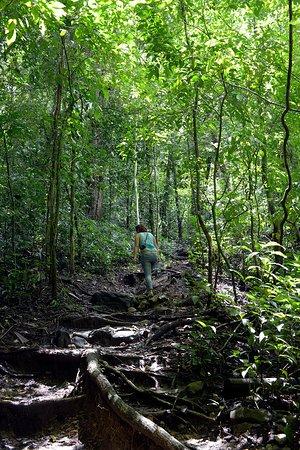 Nicoya, Costa Rica: Der Wanderweg ist durchaus anspruchsvoll, aber machbar