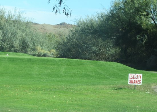 Beware of Snakes Sign, Emerald Canyon Golf Course, Parker, Arizona