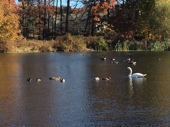 Morristown, Nueva Jersey: photo2.jpg
