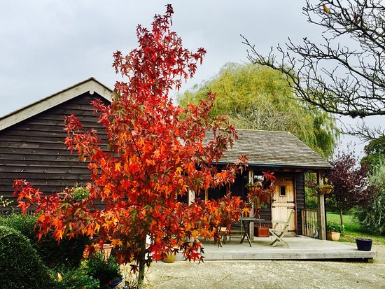 Cranbrook, UK: Little Saltwood Farm B&B