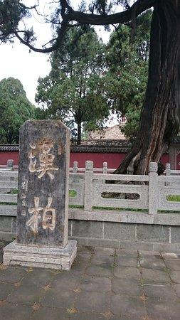 Tai'an, China: DSC_0201_large.jpg