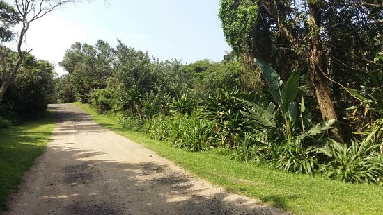 Landscape - Picture of Richards Bay Caravan Park, Meerensee - Tripadvisor