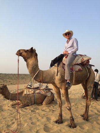 Jasmin Desert Safari & Camp - Day Tours