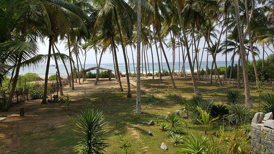 Kahandamodara, Σρι Λάνκα: Утром раскрыв окна Вас встречает океан и легкий бриз