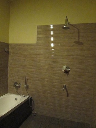 Large shower area next to a tub - Picture of Bumthang Mountain Lodge ...