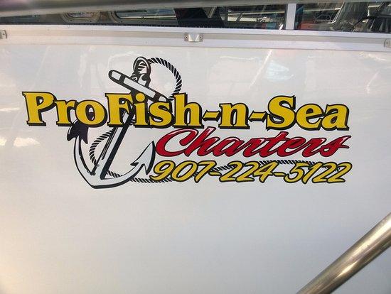 ProFish-n-Sea Charters: Boat