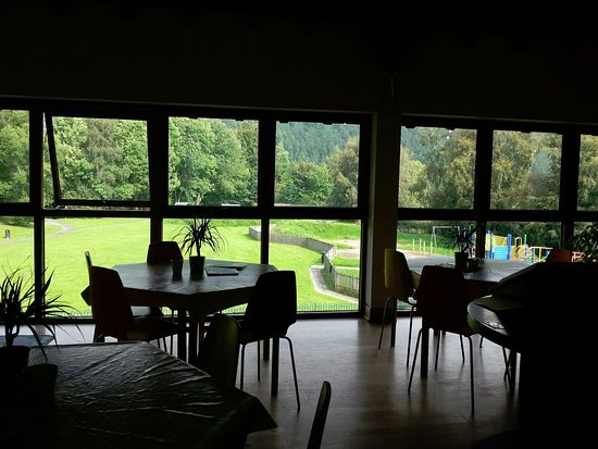 Knighton, UK: Coffee shop seating with views over Offa's Dyke Path and beautiful Kinsley Wood