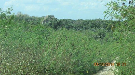 Maxcanu, Mexico: vues de la route