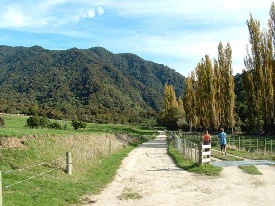 Pohara, نيوزيلندا: 8th