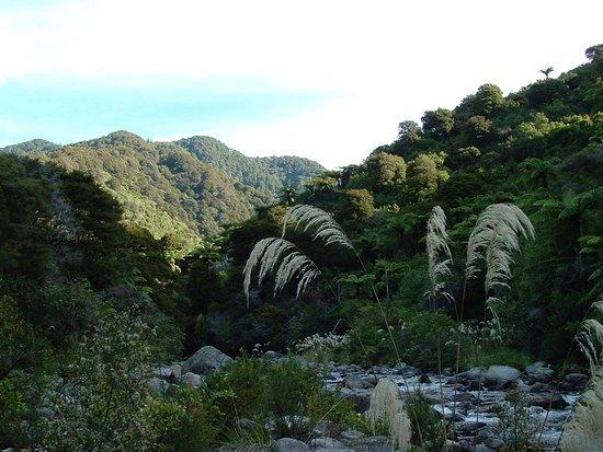 Pohara, Nueva Zelanda: 11th