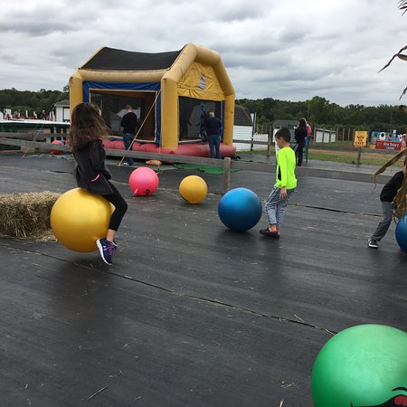Monmouth Junction, NJ: Bouncy balls