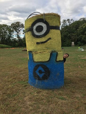 Monmouth Junction, NJ: Minion