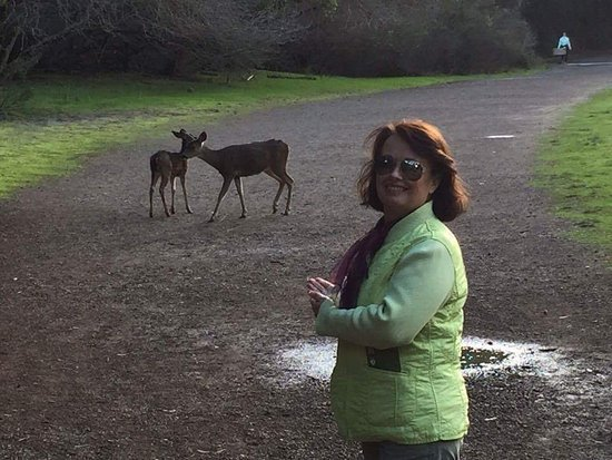 Los Altos Hills, CA: Nature