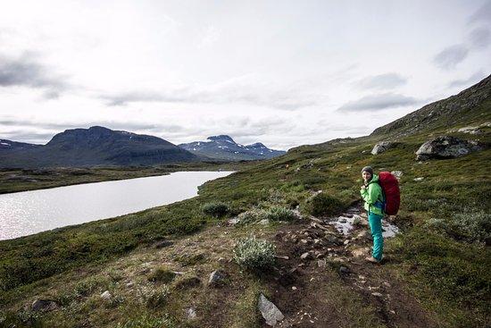 Västerbotten, Suecia: Kungsleden